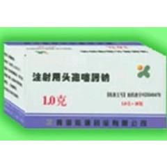 晨菲制药 注射用头孢噻肟钠