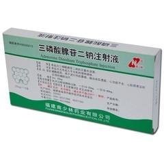 南少林药业 三磷酸腺苷二钠注