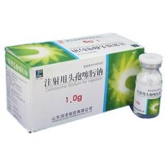 润泽制药 注射用头孢噻肟钠