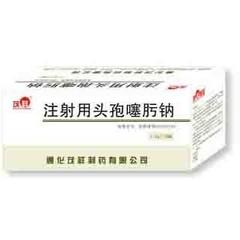 茂祥制药 注射用头孢噻肟钠