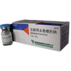 国药国瑞 注射用头孢噻肟钠
