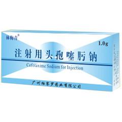 柏赛罗 注射用头孢噻肟钠