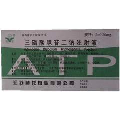 神龙药业 三磷酸腺苷二钠注射