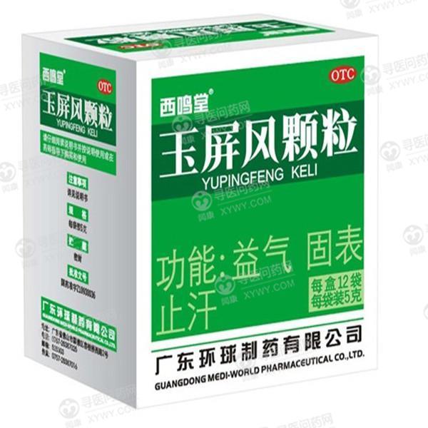 广东环球制药 玉屏风颗粒